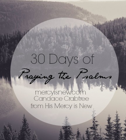 30-Days-of-Praying-the-Psalms-@mercyisnew.com-54662c9493655.jpg