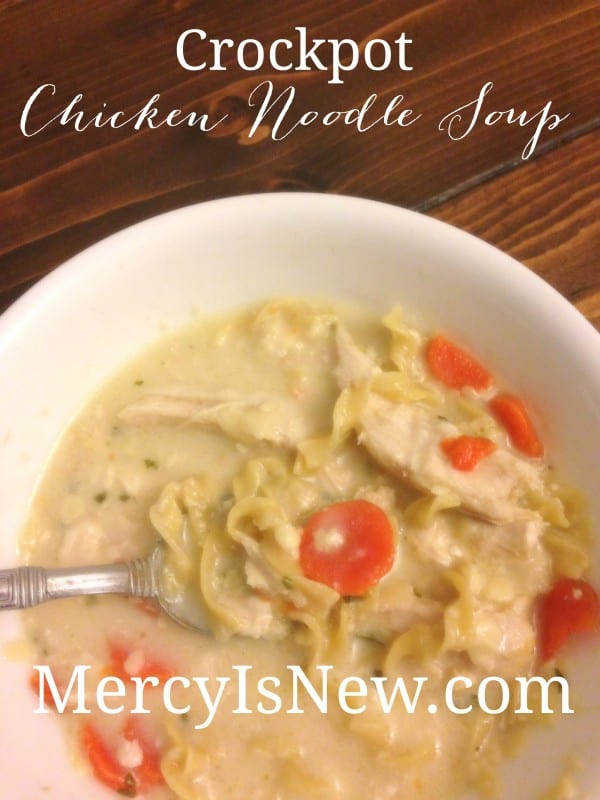 Crockpot Chicken Noodle Soup  MercyIsNew.com