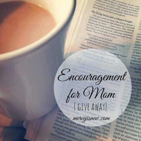 Encouragement for Mom give away at His Mercy is New
