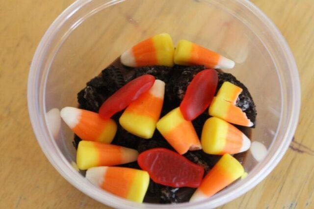 squanto snack