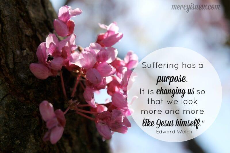 Suffering has a purpose @mercyisnew.com