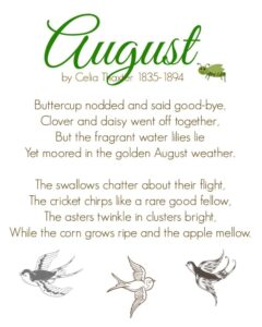 August by Celia Thaxter