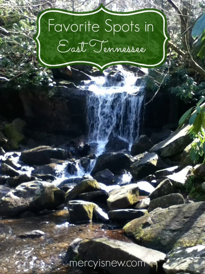 Favorite Spots in East Tennessee mercyisnew.com