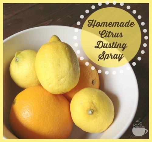 Homemade-Citrus-Dusting-Spray-@thebusymom.com_-500x467