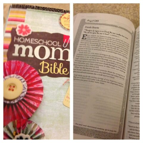 Homeschool Mom Bible review