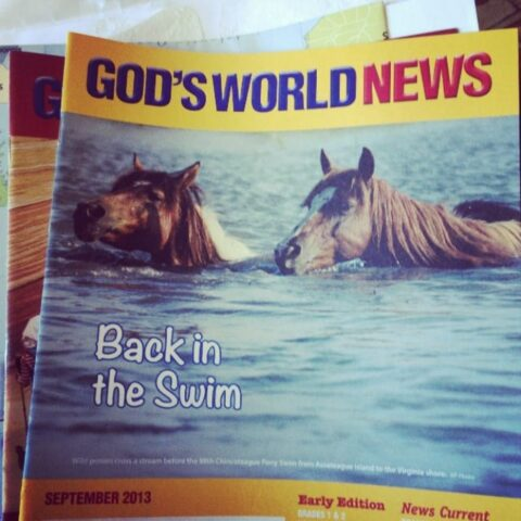 God's World News (magazine review)