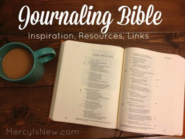 Journaling Bible Main Graphic