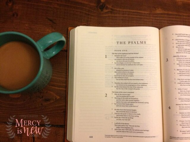 Journaling Bible as Prayer Journal 3