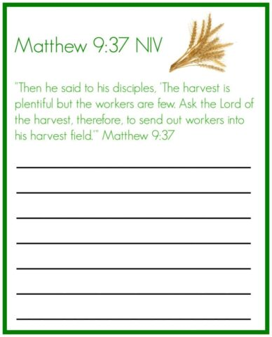 Matthew 9 copy work @mercyisnew.com