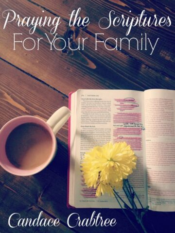 Praying the Scriptures for Your Family COVER