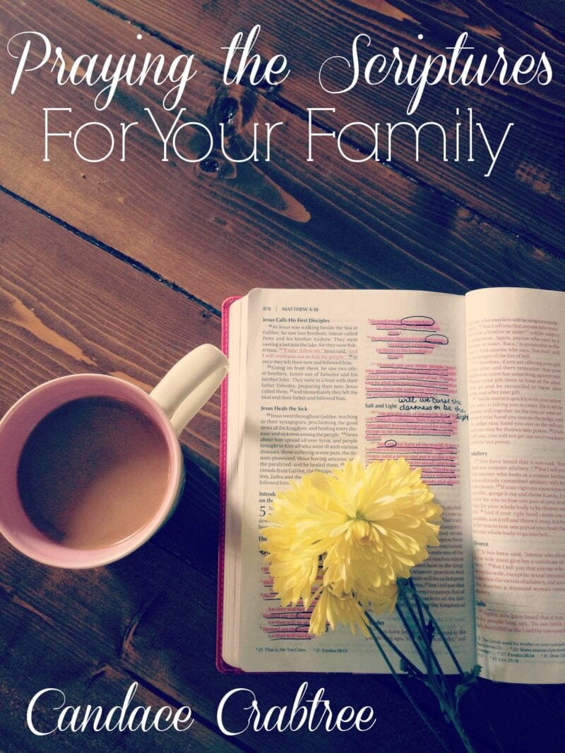 Praying-the-Scriptures-for-Your-Family-COVER-54662d42bc416.jpg