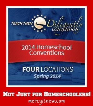 Teach Them Diligently ~ Not Just for Homeschoolers @mercyisnew.com