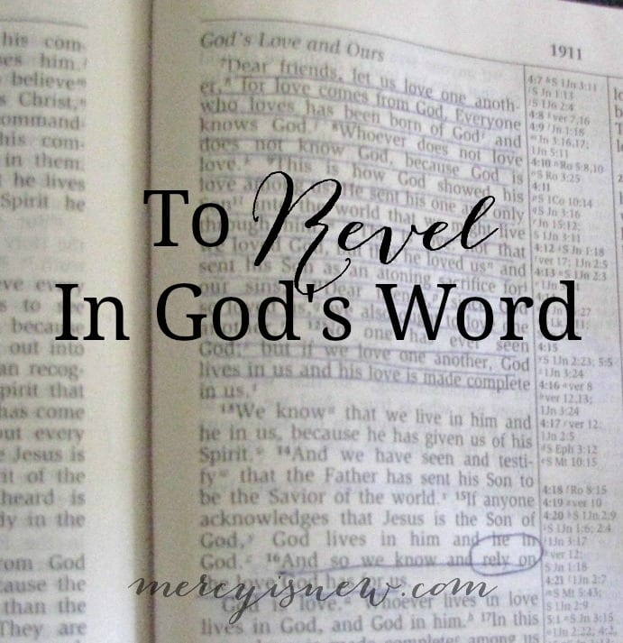 To Revel In God's Word