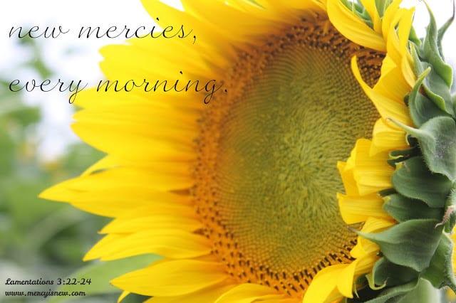 newmercies