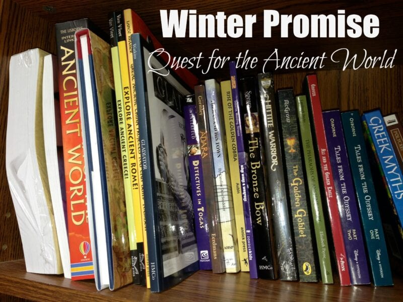 Book Cover Collage Quest ~ Expedition homeschool choose you own adventure books history